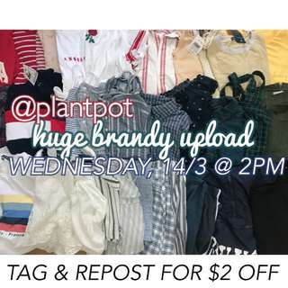 @plantpot 's brandy melville upload!!