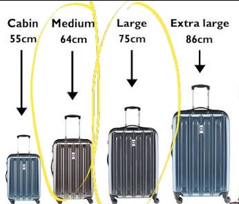 LOOKING FOR Medium Or Large Check In Luggage