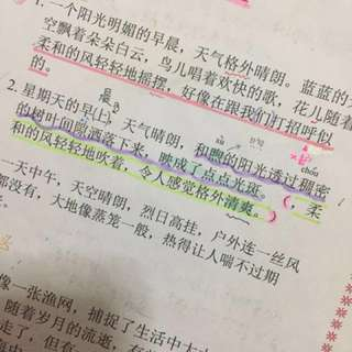 Chinese Notes -Condensed-