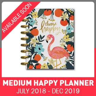 2018 - 2019 Classic Happy Planner - Hand Drawn Whimsy