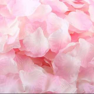 Light pink flower petals