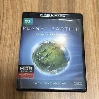 Planet Earth II 藍地球 2 BBC 大自然 動物 環保 Documentary