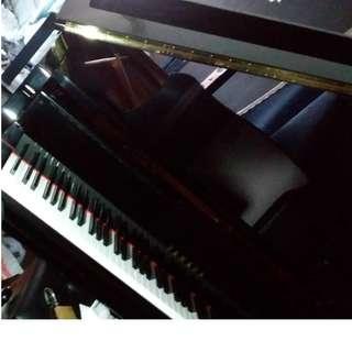Yamaha Grand Piano Model GC1