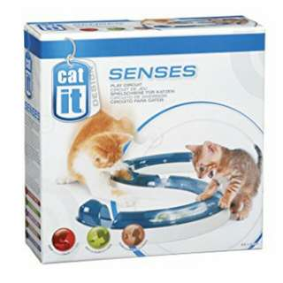 Catit Play Circuit for Cat Kitten