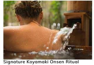 Elements wellness couple onsen