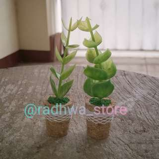 2 Buah Magnet Kulkas Vas Bunga Eucalyptus Silver Dollar