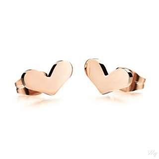 Titanium steel earrings TE122
