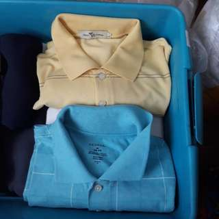 Authentic Polo Ambercrombie