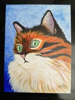 Cat Acrylic Painting 1
