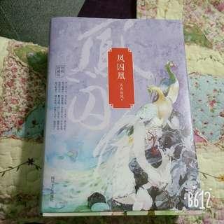 Chinese novel凤囚凰华文小说书