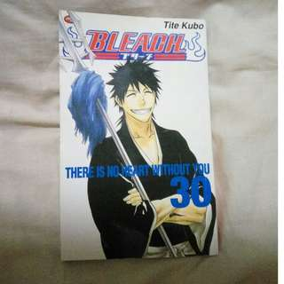 BLEACH VOL 30