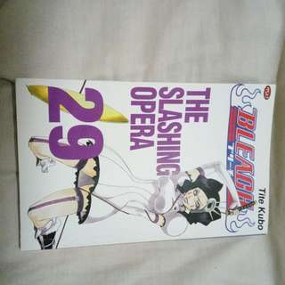 BLEACH VOL 29