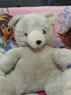 Boneka teddy bear broken white big sz 42cm bagus bgt😍