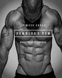 Men's 12 Week Shred PDF