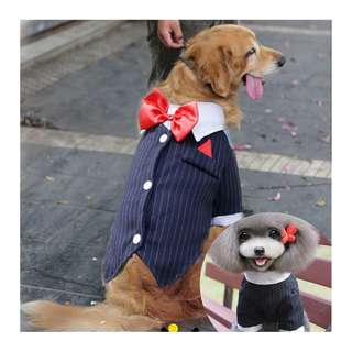 BN Cute Stylish Pets Tuxedo Wedding Suit - for Dogs/ Cats