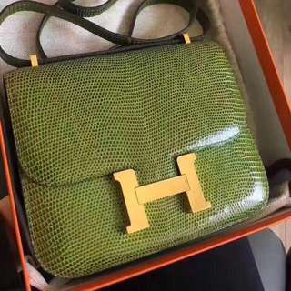Hermes 🍏蜥蜴 小康康 極好狀態 Constance 19