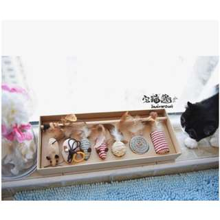 Cat Teaser Gift Set