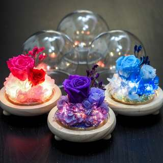 Candy Pop - Preserved Flower Dome