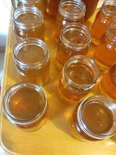 香港自家養殖 珍貴冬蜜 鸭腳木蜂蜜 蜜糖