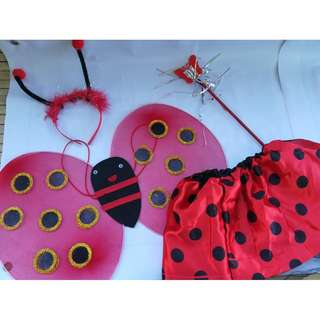 Lady bug costume with wings