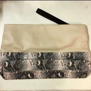 Zara Clutch Bag