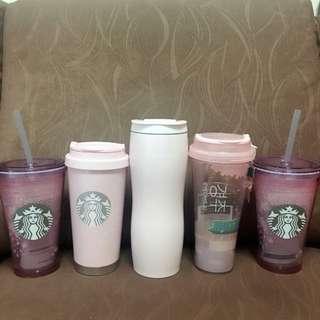 [SALE] Starbucks Korea Spring Pink Assorted Tumblers Water Bottles