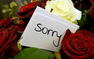Apologiess