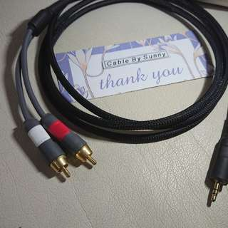 3.5mm to 2 rca cable.