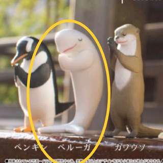 <預購>合掌動物-小白鯨