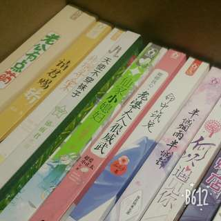Chinese novel books华文爱情言情小说书