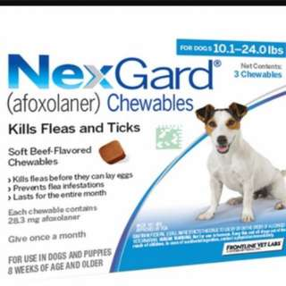 Ready stock! Only one left! Nexgard for Dogs 4-10kg