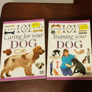 Pet dog training