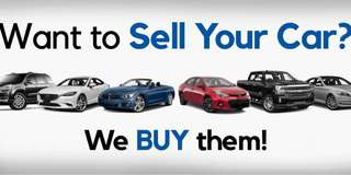 Buying all used car