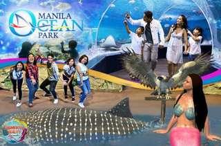 Manila Ocean Park 13 attractions w/lunch buffet