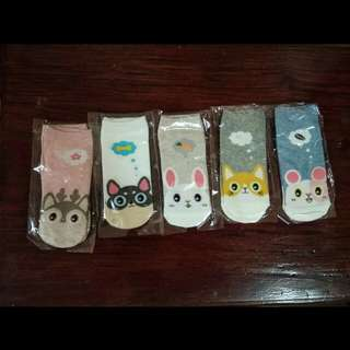 animals korean socks