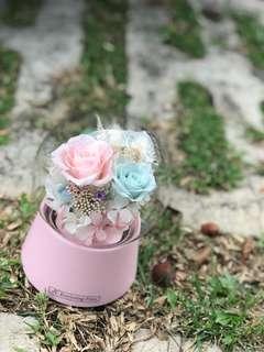 Sweet Dreams - Preserved Flowers