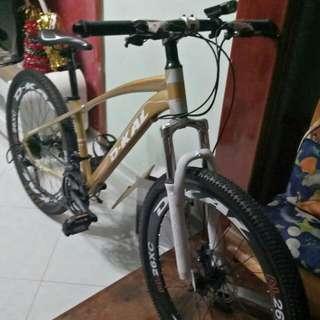 WTS mountain  Bike (CAN NEGO)