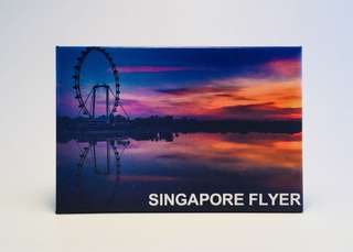 Singapore Flyer ref magnets