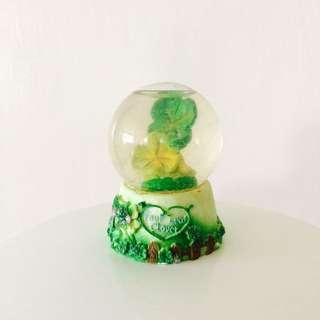 🚚 🍀幸運草小水晶球