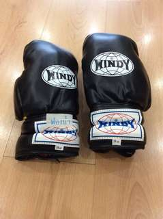 Windy Boxing Gloves