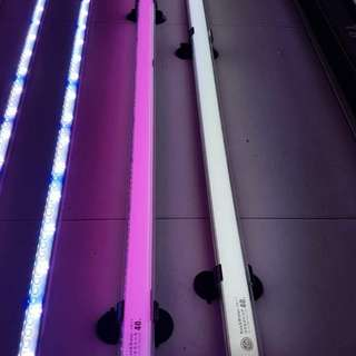 NEW NEC UVB TANNING light for fish tank!!! Enhance the colour of your aro & ray through effective TANNING!!!