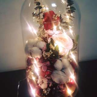Preserved flower bell jar