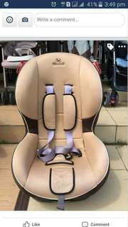 Carseat baby shield