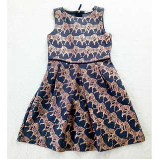 Bnew crewcut dress 5t