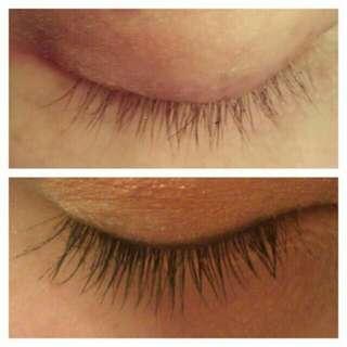 Eyelash Growth Cold Pressed Serum (10 ml) Instock