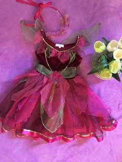 Tinkerbel (Rosetta)Costume