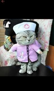 Puppy dog cat nurse uniform