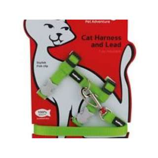 Red Dingo Cat Harness and Lead