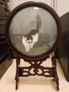 Anti cat, size dia 210mm