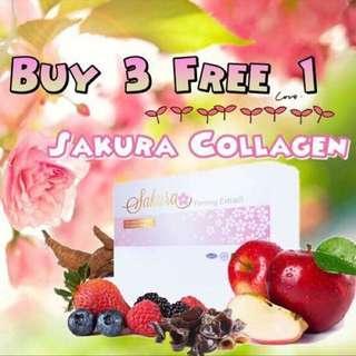 Sakura promo